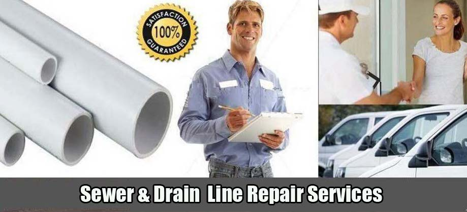 Levine & Sons Plumbing, Inc. Sewer Line Repair